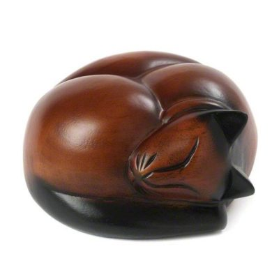 Gato durmiendo marrón oscuro